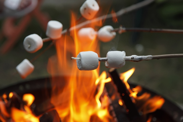 campfire with marshmallows